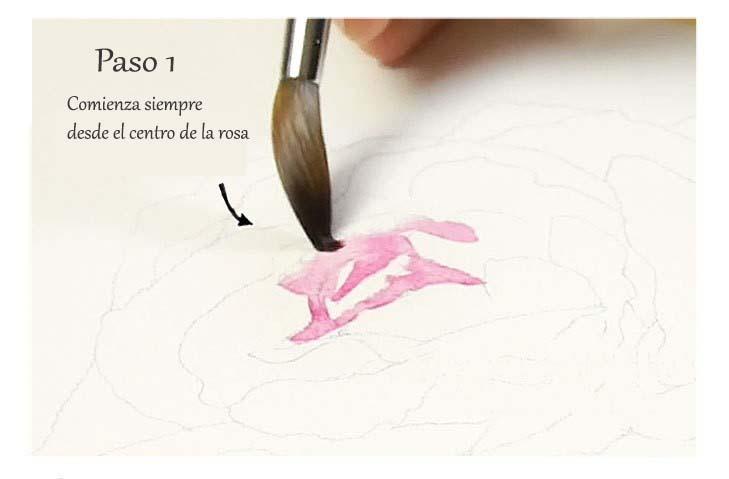 Paso 1. Cómo pintar una rosa en acuarela