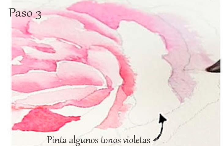 Paso 3. Tutorial paso a paso cómo pintar una rosa en acuarela