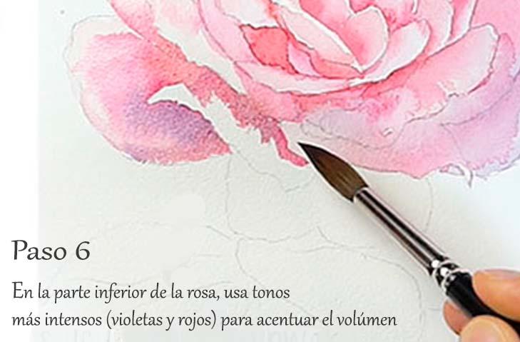 Paso 6. Tutorial paso a paso cómo pintar una rosa en acuarela
