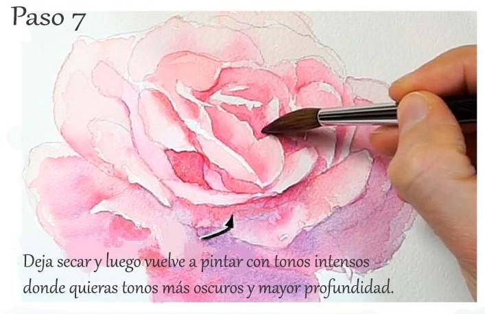 Paso 7. Tutorial paso a paso cómo pintar una rosa en acuarela