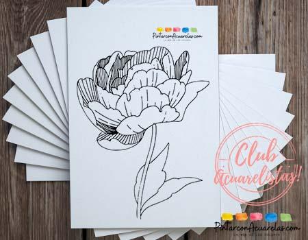 Página 26 del PDF - Plantilla con dibujos de flores para imprimir y pintar
