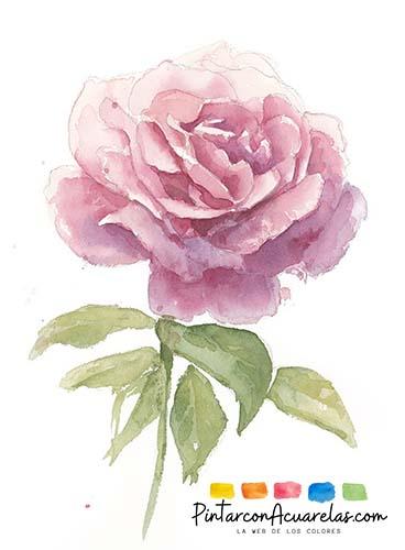 Rosa terminada - Tutorial cómo pintar una rosa en acuarela