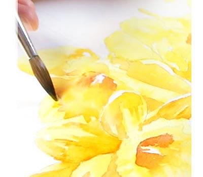 Paso 3 - Aplica naranja para generar mayor volumen y profundidad a los narcisos en acuarela.