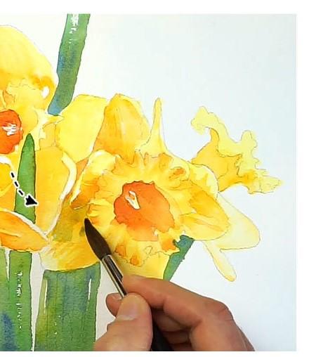Paso 7 - Pinta flores de narciso en acuarela
