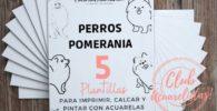 plantillas de perro pomerania para pintar con acuarela